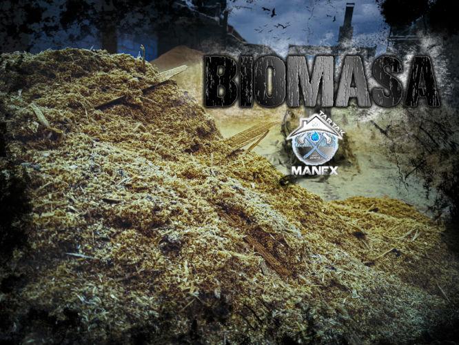biomasa tartak manex - grafika reklamowa plugin gorzów wielkopolski